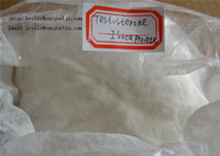 Testosterone  Isocaproate Muscle Building Steroids CAS No.: 15262-86-9