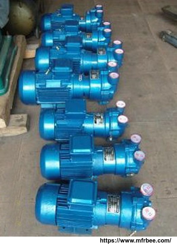 2bv_series_water_ring_vacuum_pump