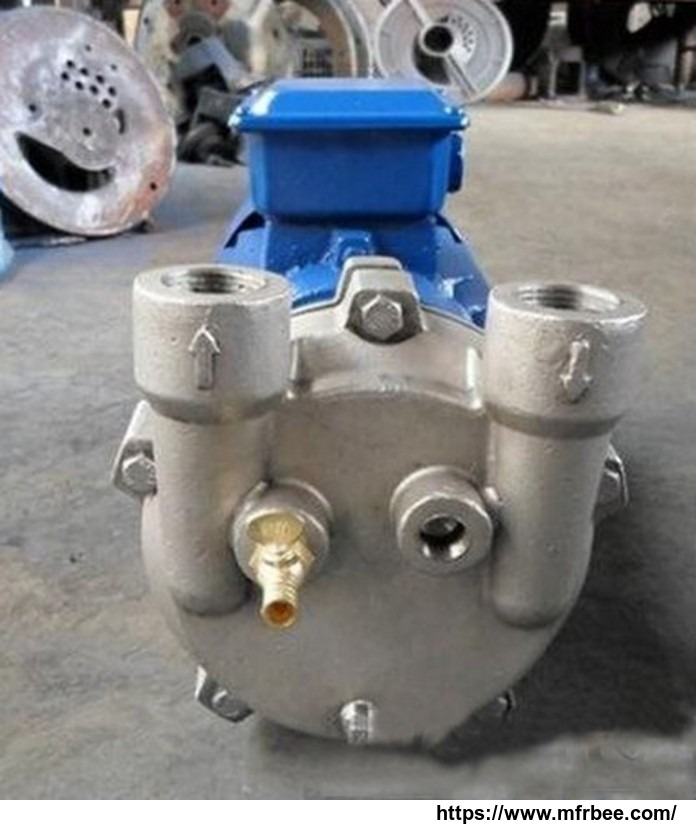 2bv_2061_series_water_ring_vacuum_pump