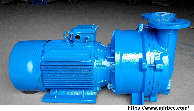 2bv5121_single_stage_water_ring_vacuum_pump