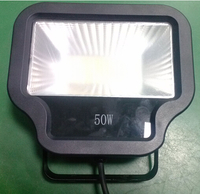 LED Floodlight, 50W, 100-240V, IP65 for Landscape/Architectural