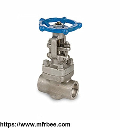 forged_stainless_steel_gate_valve_api_602_2_inch_800_lb_thread
