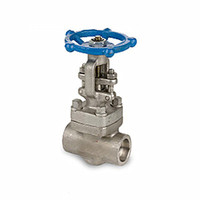 Forged Stainless Steel Gate Valve, API 602, 2 Inch, 800 LB, Thread