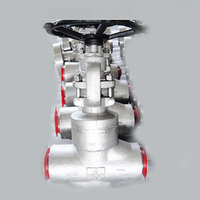 LF2 Carbon Steel Forged Globe Valve, API 602, 2 Inch, 2500 LB