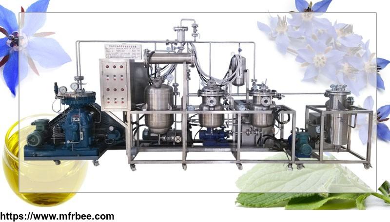low_temperature_extraction_machine_for_borage_seed_oil_extract
