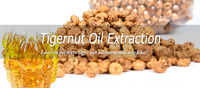 Low Temperature Tigernut Oil Production Process