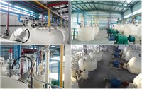 Mealworm Oil and Protein Processing Equipment