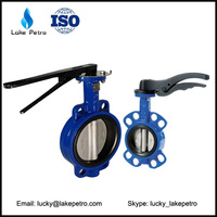 OEM DN50 Water oil gas Double flange butterfly valve