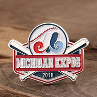 Michigan Expos Baseball Pins