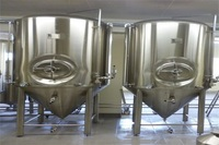 3000L beer fermentation tank suppliers with unitank for beer making