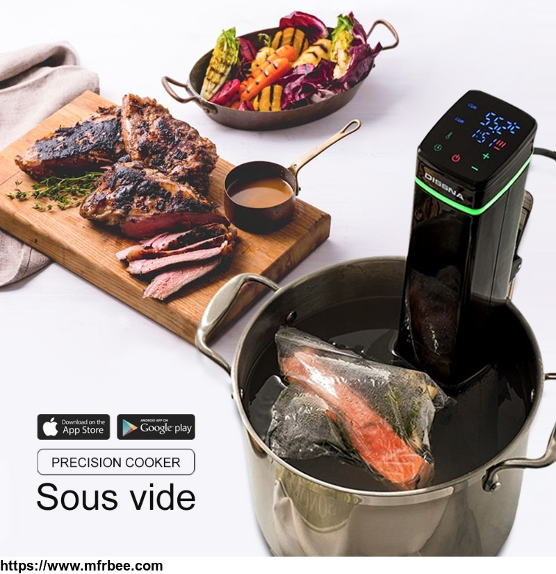 Perfect Cooking Delicious Meat Sous Vide Vacuum Slow Cooker Machine