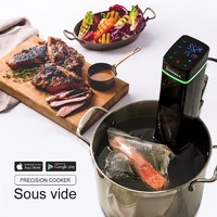 Touch Screen Led Display Wifi Sous Vide Works With Iphone Or Android