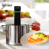 +- 2 Degree Temperature Setting Precise Heating Sous Vide Immersion Circulator