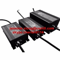 electronic HID ballast for street lighting,outdoor lighting luminaire