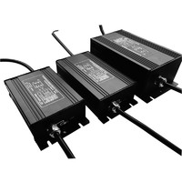 more images of digital electronic ballast for grow lighting with CE,ROHS