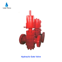 China Hydraulic Gate Valve for sale
