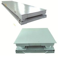 BF Series Mild Steel Floor Scale