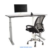 Timoek Two Motor Sit Stand Desk Supplier From China