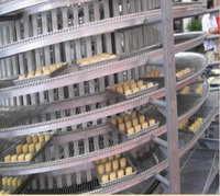 more images of Metal Conveyor Belts For Food Processing
