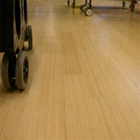 Dasso Indoor 2ply Bamboo Flooring, Vertical Natura