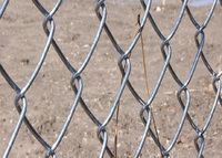 Galvanized or PVC Coated Chain Link Fence