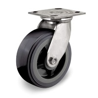 2 inch wide caster