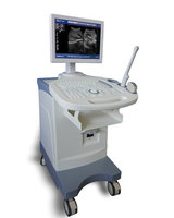 Trolly Build-in Black & Whitel Ultrasound Scanner BW-5Plus with 15 Inch LED Screen