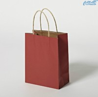 more images of Paper bag, clothing paper bag, garment paper bag, shopping paper bag, paper hand bag