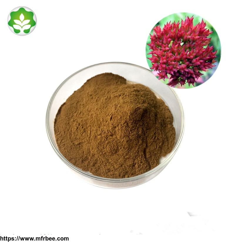 rhodiola_root_powder_rhodiola_powder_stress_relief