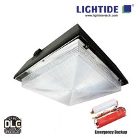 DLC Premium Emergency LED Canopy Lights, 60W low profile, 90min. Emergency Battery