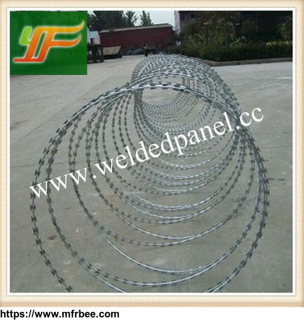 china_best_selling_hot_dipped_galvanized_and_pvc_coated_razor_barbed_wire