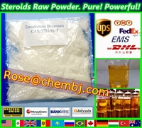 Sell Your Looking For Testosterone Decanoate Raw Powder - Mfrbee com