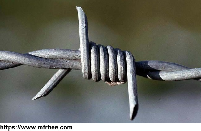 barbed_wire_for_security_fencing