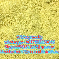 newest 5cladba with high purity in stock hot sale