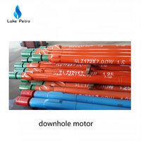 Oil Well Downhole Tool Drilling Mud Motor