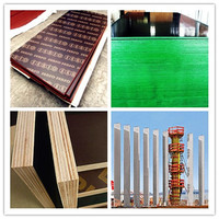 more images of FILM FACED PLYWOOD