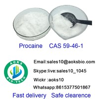 Procain  cas 59 46 1  raw material china factory high quality best price