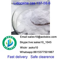 Lidocain cas 137 58 6  API bulk stock  raw material china factory high quality best price