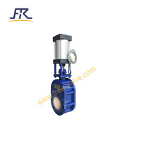 Thin Type Pneumatic Ceramic Double Disc Gate Valve