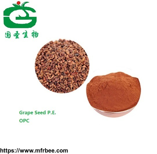 Natural Fruit Extract Grape Seed P. E Capsules with High Quality 95%OPC