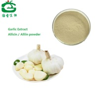 Natural Organic Garlic extract Allicin / Alliin powder