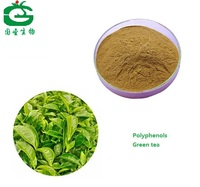 Green Tea Extract Powder./Tea Polyphenol50% /Green Tea P.E with High Quality