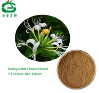 High Quality Honeysuckle Flower Extract With Chlorogenic Acid/Honeysuckle Flower P.E