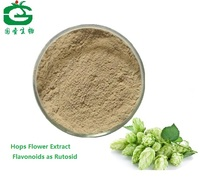 Natural Humulus Lupulus Extract/Hop Flower extract powder Solvent Extraction 0.35% Flavonoids as Rutosid