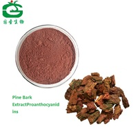 Pine Bark Extract Powder Procyanidine 95%OPC