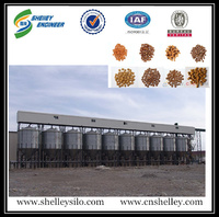 chicken feed storage steel silo for poultry farm