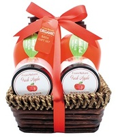 Whosales Fresh Apple Frangance Spa Sets bath and body care For women