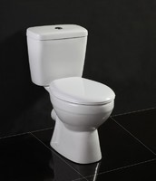 New design Ceramic toilet/WC pan for the bathroom