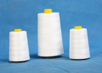40s/2 spun polyester sewing thread for quilting machine