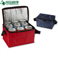 Promotional custom polyester insulated cans cooler carry bag for frozen food